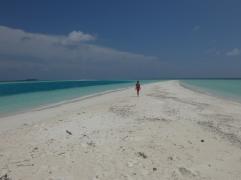 sand bank maldivas